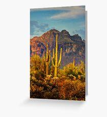 The Desert Golden Hour II  Greeting Card