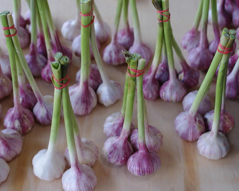 Dancing Garlic by Tom  Reynen