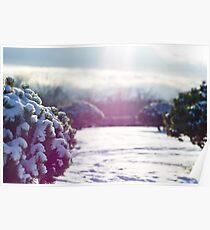 Snow Land Poster