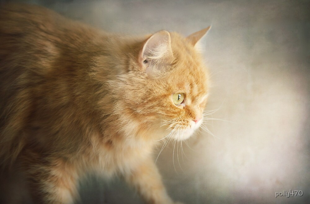 The Ginger Hunter by polly470