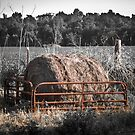 Hay Bale in Quincy by David Owens