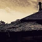 Autumn of the Patriarch. Two. Roofs by Nikolay Semyonov