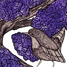Wren in the Blossom Tree by samclaire