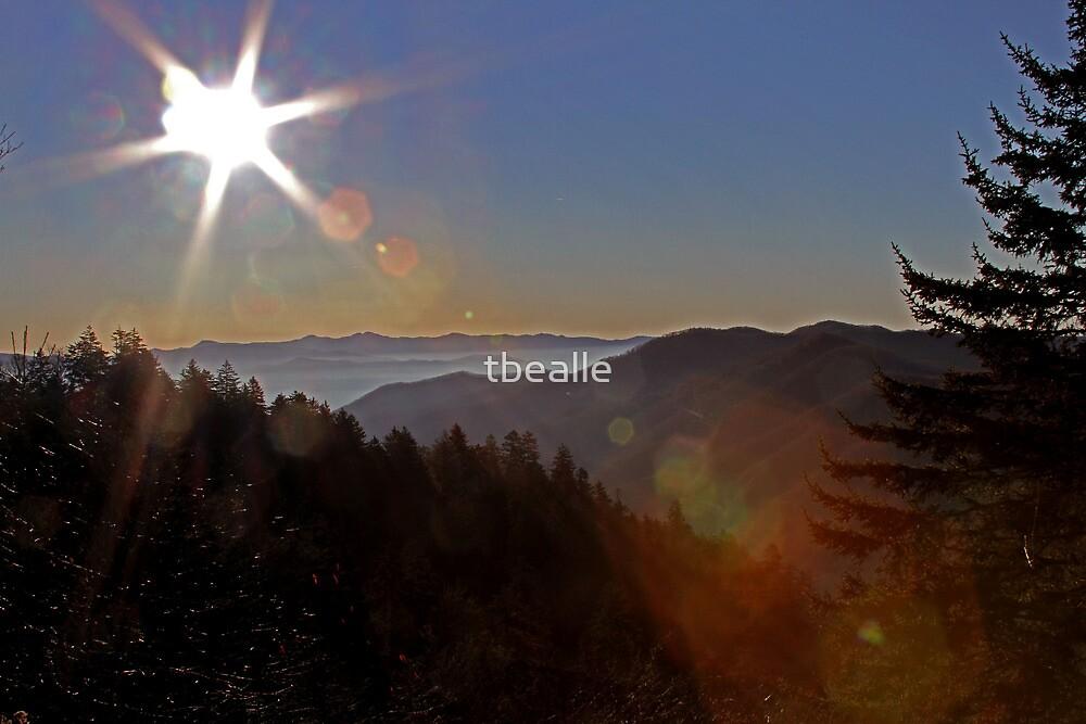 Smoky Mountain Sunrise by Terri~Lynn Bealle