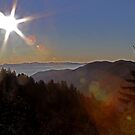 Smoky Mountain Sunrise by Terri~Lynn Bealle