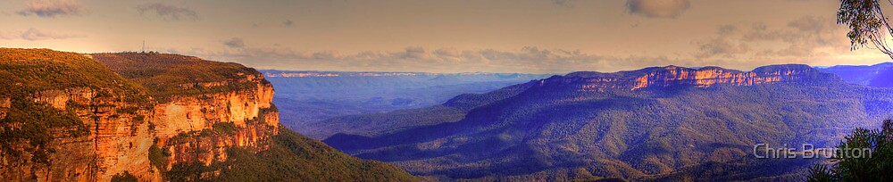 Blue Mountains valley by Chris Brunton