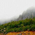 Lake Highway, Tasmania by wearehouse