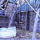 Old cottage, Colebrook area, Tasmania by wearehouse