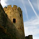 Turret, Conwy Castle, Wales. by Tania  Donald