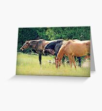 Sun Baskers Greeting Card