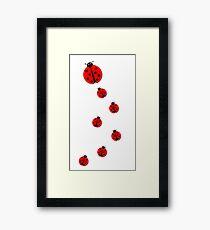 Many Ladybugs Framed Print