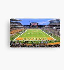 Baylor Touchdown Celebration Canvas Print