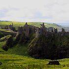 Dunluce Castle by Don Rankin