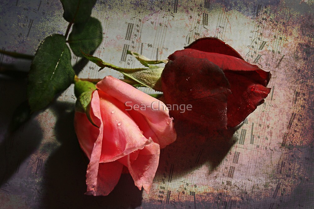 Music and Roses by Sea-Change