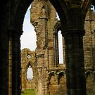 Arch, Whitby Abbey by Tania  Donald