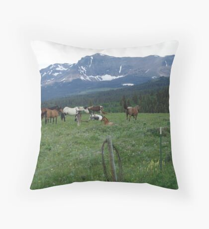 BLACKFOOT HORSE BAND - NEAR BROWNING, MT Throw Pillow