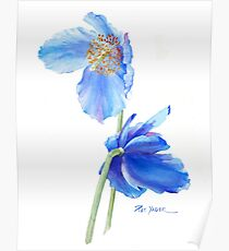 Blue Poppy Sails in the Wind Poster