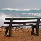 Any bench in a storm? by George Petrovsky