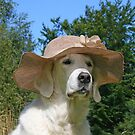Pretty lady with summer hat by Trine