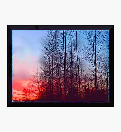 Winter Sunrise Through the Trees Photographic Print