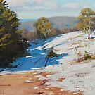 Australian Winter Sunny Corner by Graham Gercken