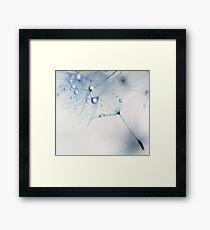 baby blue Framed Print