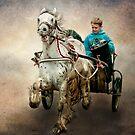 Gypsy Trot by Brian Tarr