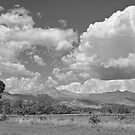 Thunderstorm Clouds Boiling Over The Colorado Rocky Mountains BW by Bo Insogna
