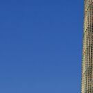 Torre Agbar 2 by Craig Fletcher