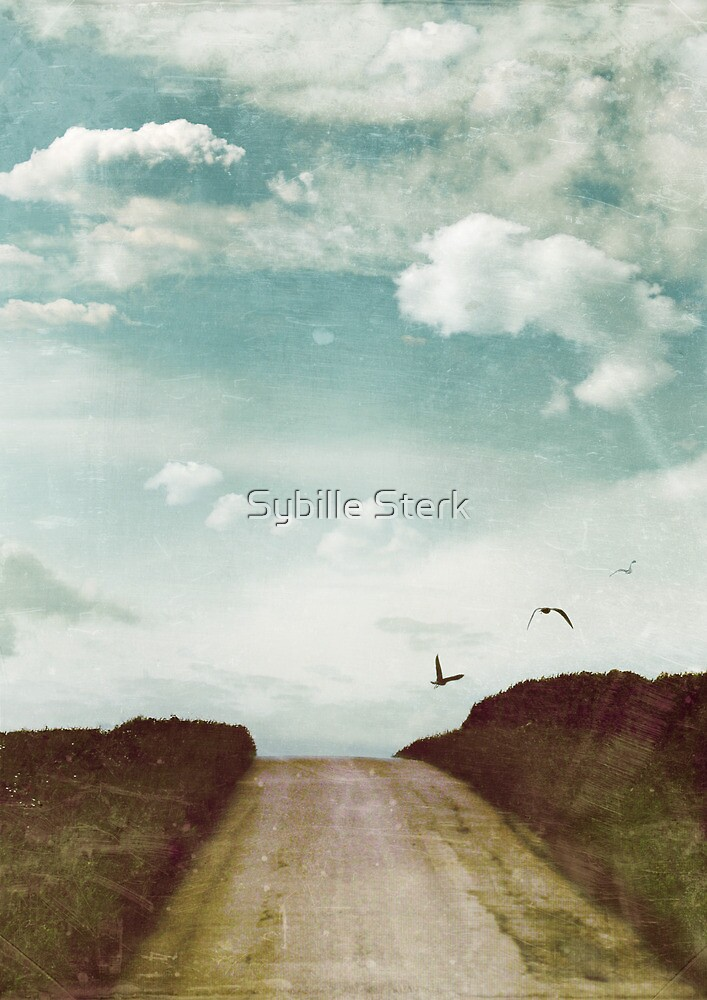 The High Place by Sybille Sterk