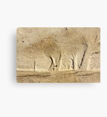Forest in the Sand Metal Print