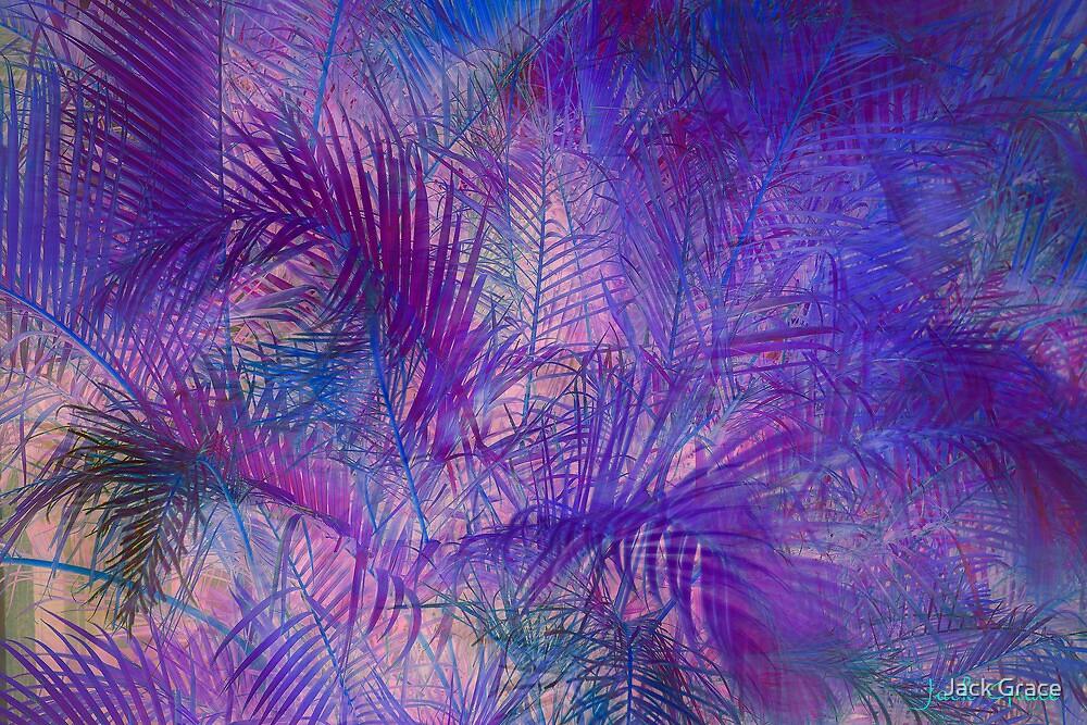 The Palms by Jack Grace