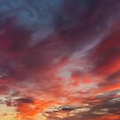 Pink Pano by Brian Kerr