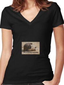 You're Turtley Awesome  Women's Fitted V-Neck T-Shirt