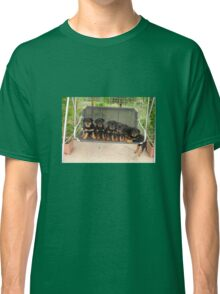 Six Rottweiler Puppies Lined Up On A Swing Classic T-Shirt