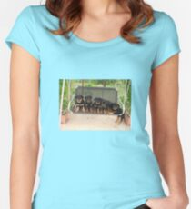 Six Rottweiler Puppies Lined Up On A Swing Women's Fitted Scoop T-Shirt