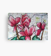 Cyclamen in the Suburbs Canvas Print