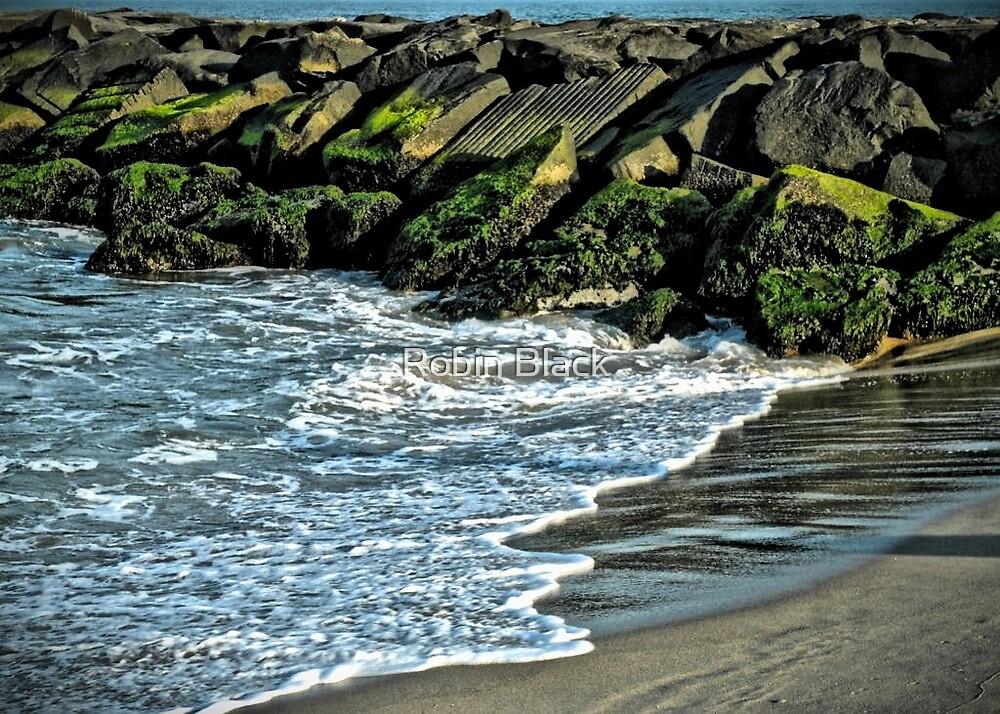 Ocean City, MD by Robin Black