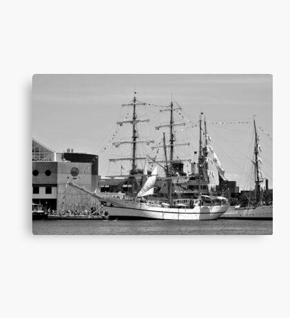 Baltimore Sailabration Canvas Print