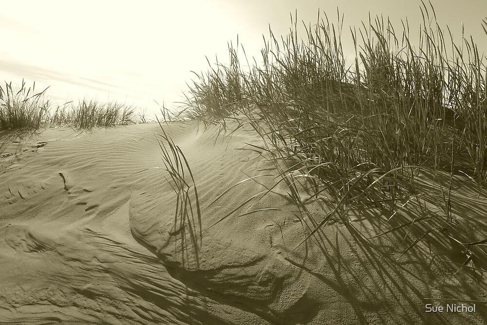 Redcar Dunes by Sue Nichol