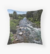 The Gold Rush Throw Pillow