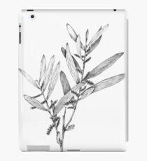 Wattle- Acacia sophorae iPad Case/Skin