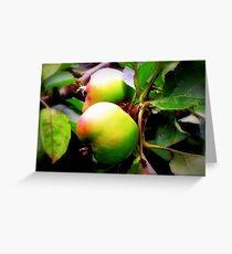 Juicy Apple's... Greeting Card