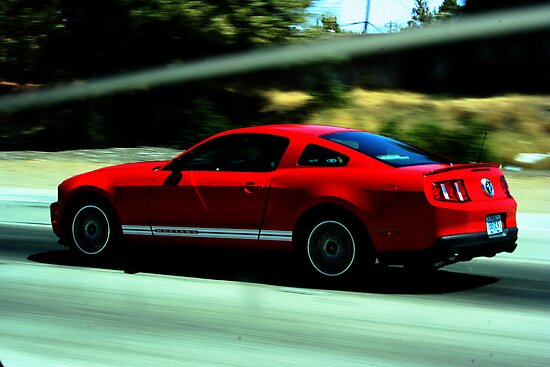 Mustang Pure Speed by pandabear510