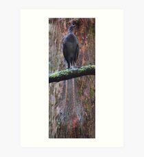 A bird's tale  Art Print