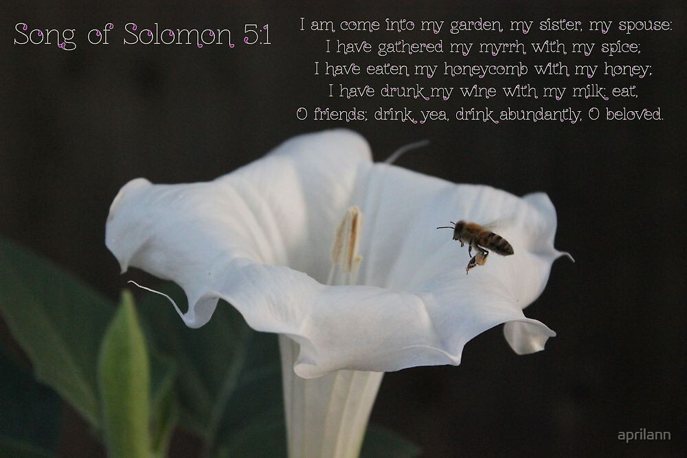 I am come into my garden by aprilann