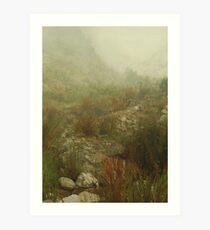 Quiet Reeds Art Print