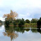 Tambo river by Sherie Howard