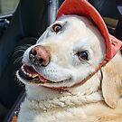 This Is My Best Fundraising Smile :) by Susie Peek