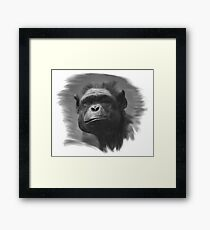 The Monkey Illustration Framed Print